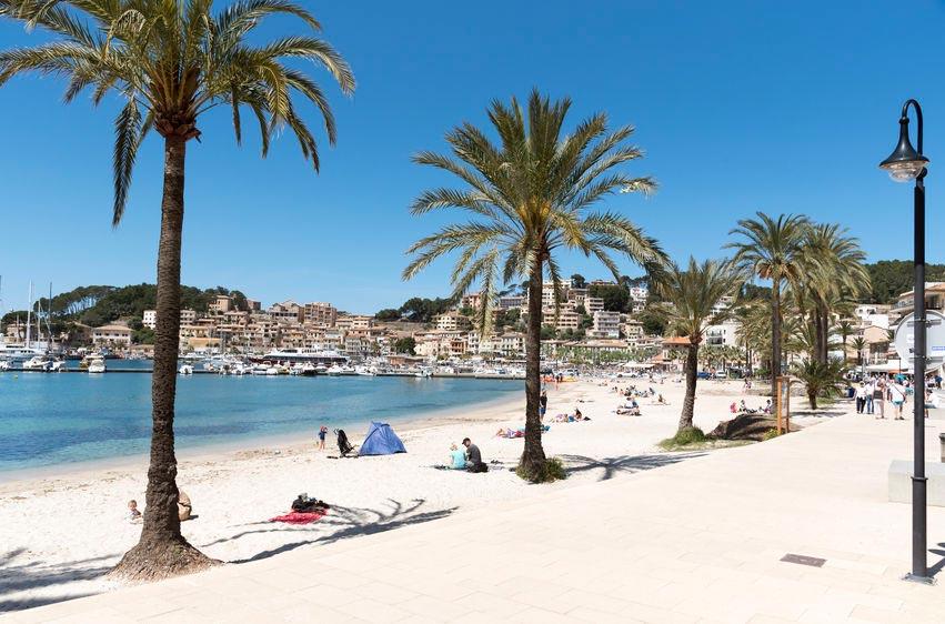 palmer og sand ved stranden