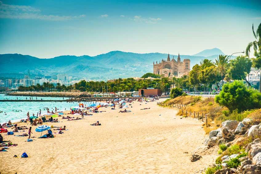 Udsigt over strand og La Seu Katedralen i Palma De Mallorca