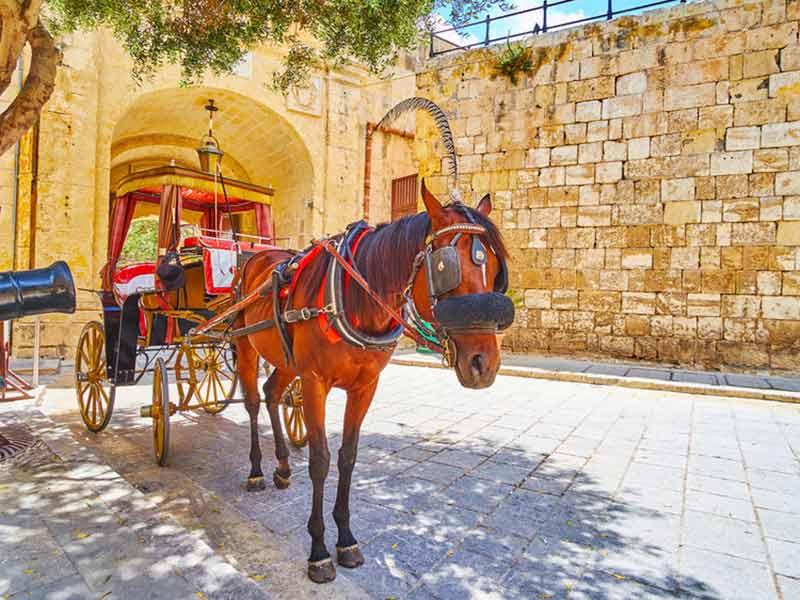 Hestevogn i den middelalderlige Mdina på Malta
